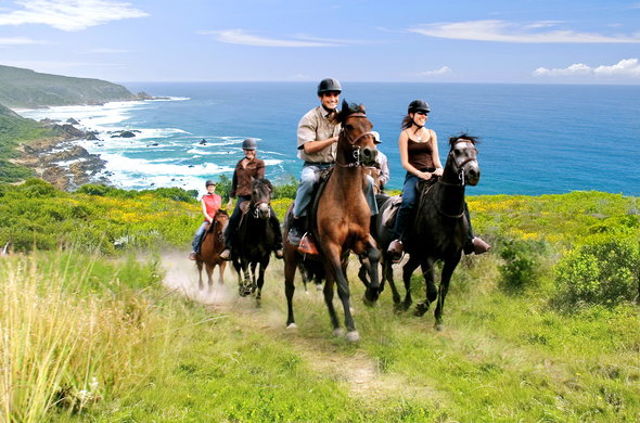 Conrad Pezula Resort offers scenic horse riding trails.