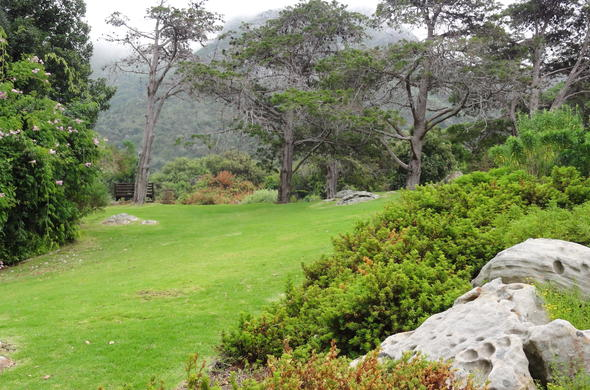 Kirstenbosch Botanical Gardens is one of the best spots to have a picnic.