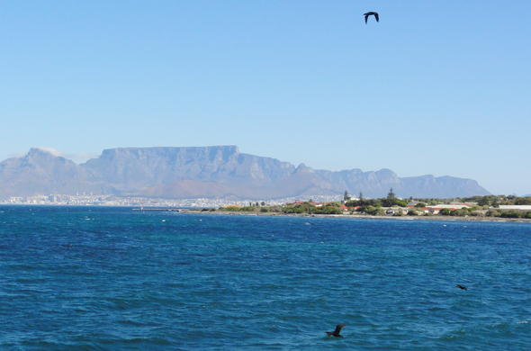 View of Table Mountain from the coast of Robben Island.