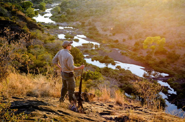 Scenic walking trail in Kruger National Park.