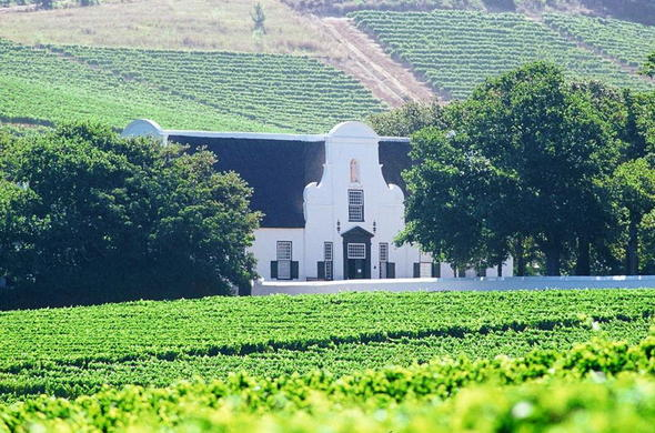Visit the Cape Winelands on a guided day tour.